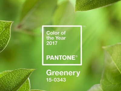 design colour of the year