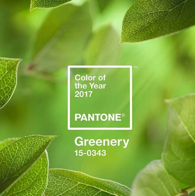 2017 Colour of the Year
